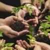 Pubblicati bandi agricoltura sociale per il servizio civile nazionale